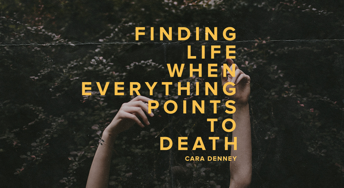 Finding Life When Everything Points to Death