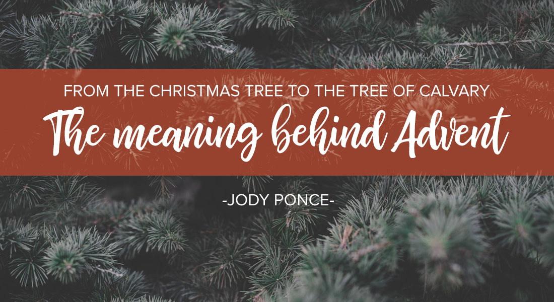 From the Christmas Tree to the Tree of Calvary: The Meaning Behind Advent