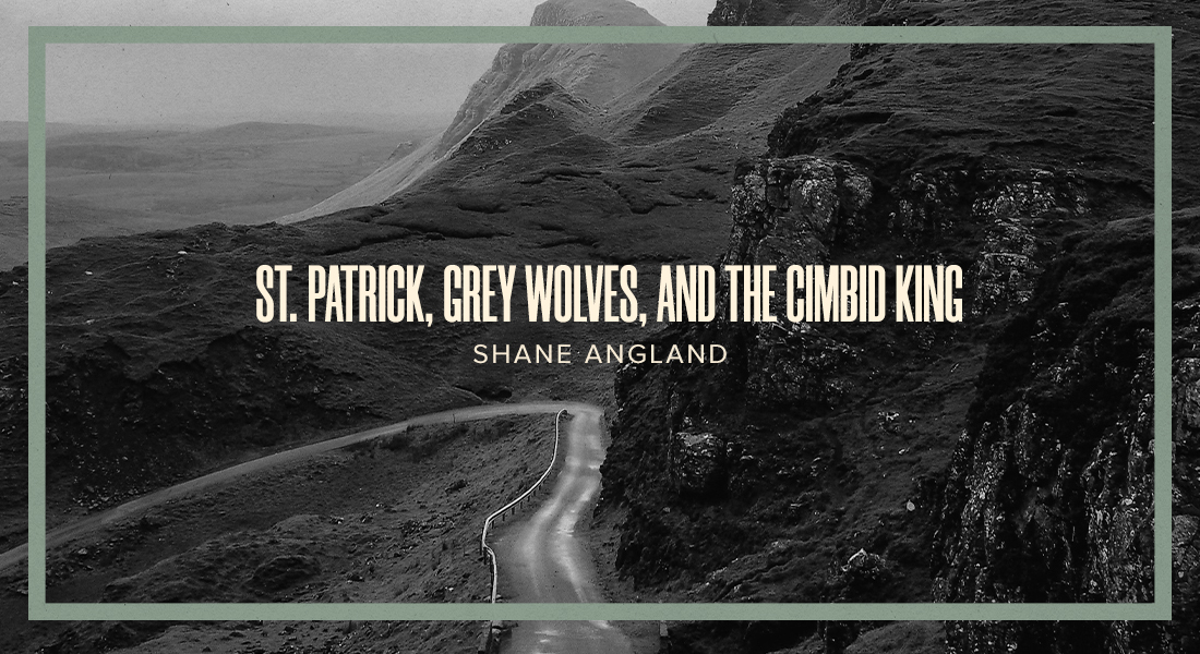 St. Patrick, Grey Wolves, and the Cimbid King