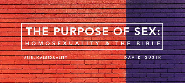 The Purpose Of Sex: Homosexuality And The Bible