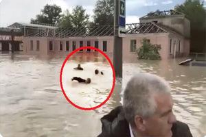 Un gobernador ruso recorre inundación en bote mientras emple...