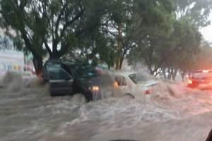 Esperaban que pasara la lluvia en su auto encendido y murier...