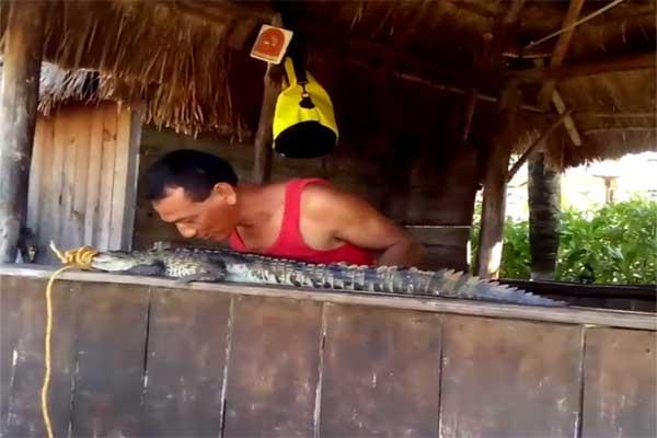 Atrapan cocodrilo en playa El Recodo