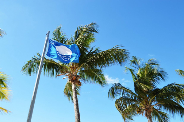 Buscan por séptimo año consecutivo Blue Flag