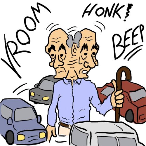 Senior transportation vroom