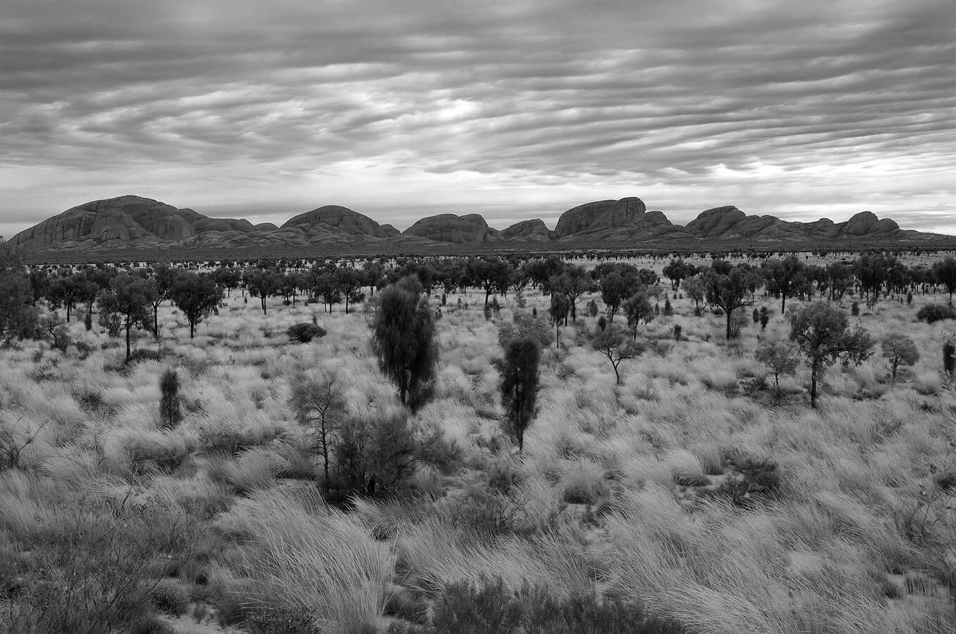 Kata Tjuta Black and White Landscape by Carrie Morgan