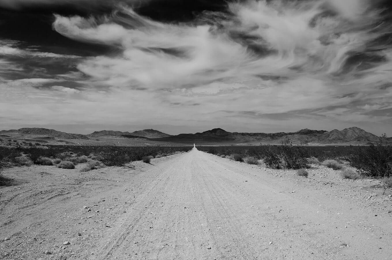 Johnson Valley California in Black and White by Carrie Morgan