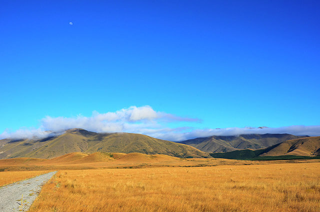 Pelannor Fields New Zealand Photography by Carrie Morgan