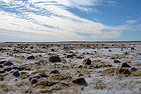 Lake Eyre Salt Lake Australia by Carrie Morgan