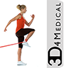 Rehabilitation for Lower Limbs app icon