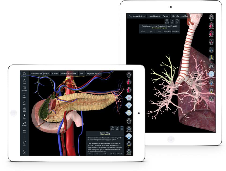 Essential Anatomy iPad Systems