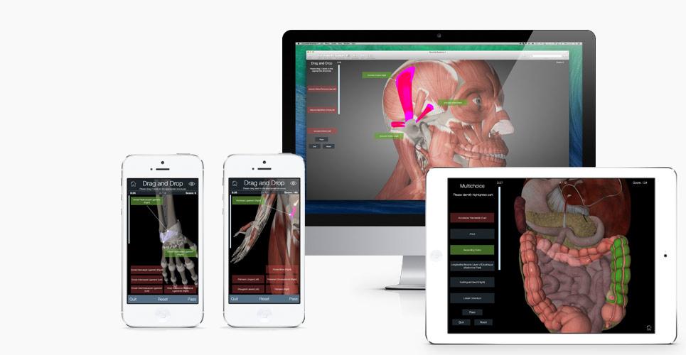 Essential Anatomy iPad - Quiz