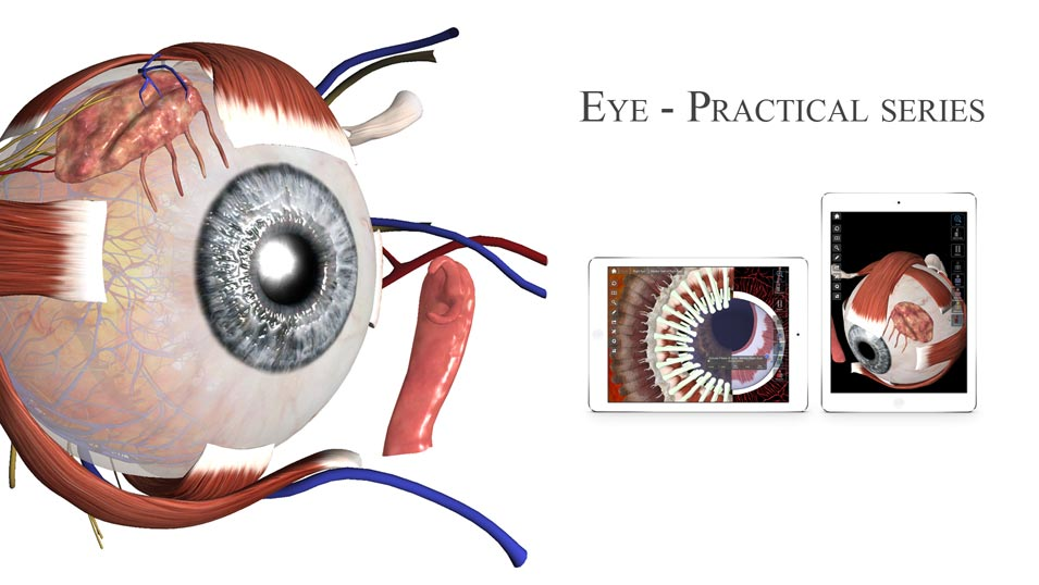Banner Eye Practical Series App