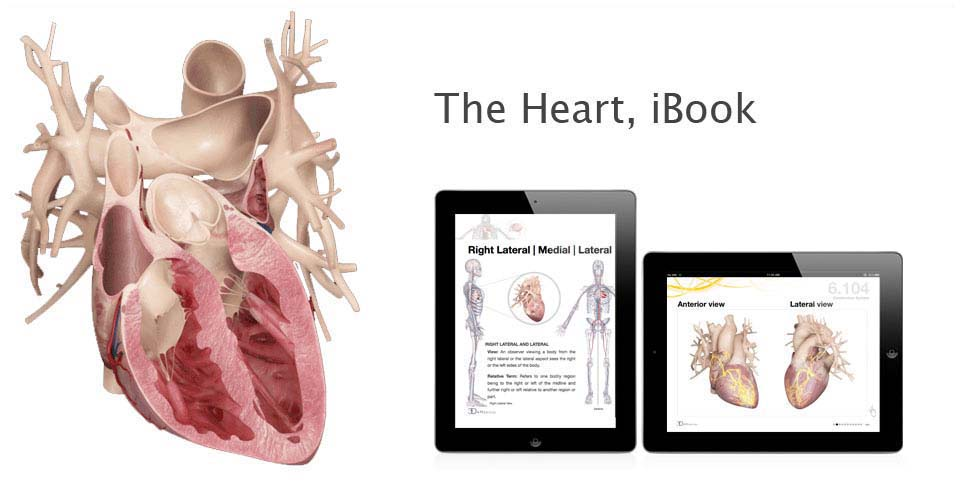The Heart iBook
