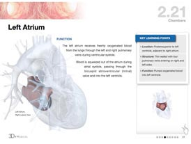 The Heart iBook screenshot