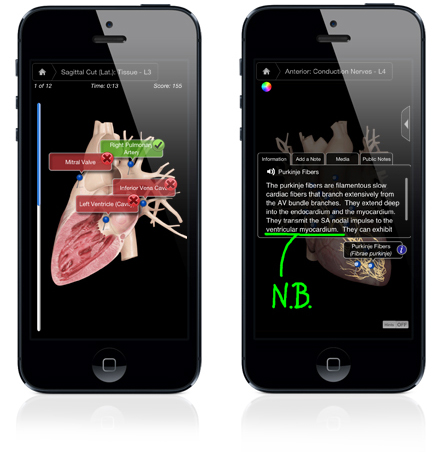 iPhone interface