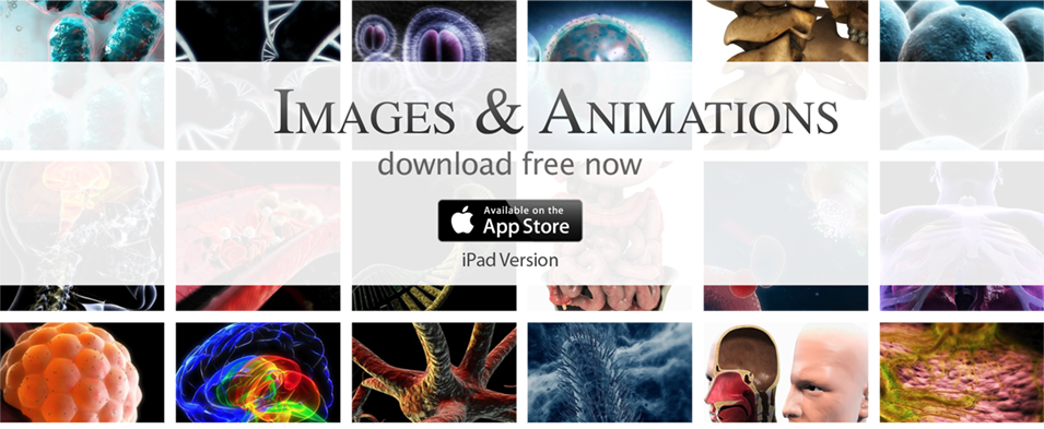 Images and Animations free app banner