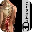 Orthopedic Patient Education icon
