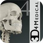 Essential Skeleton icon