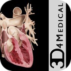 Heart Pro