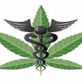 SkyWalker health group