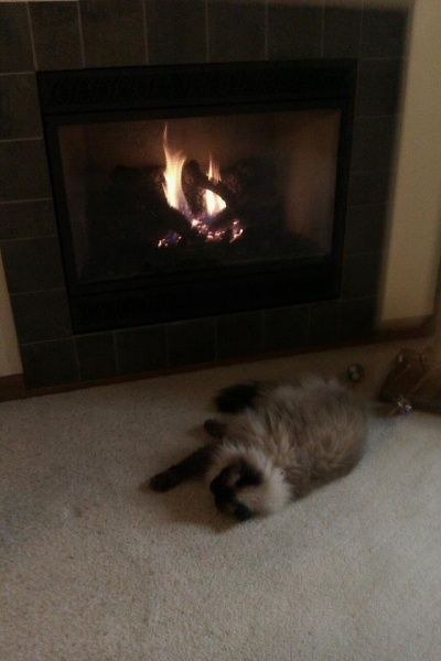 Of course all of us like to sit next to the fire on a cold day.