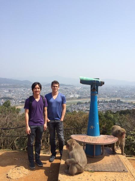 Iwatayama Monkey Park, Japan