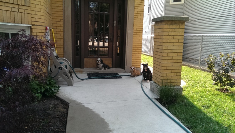 This is the front entrance to our building.
