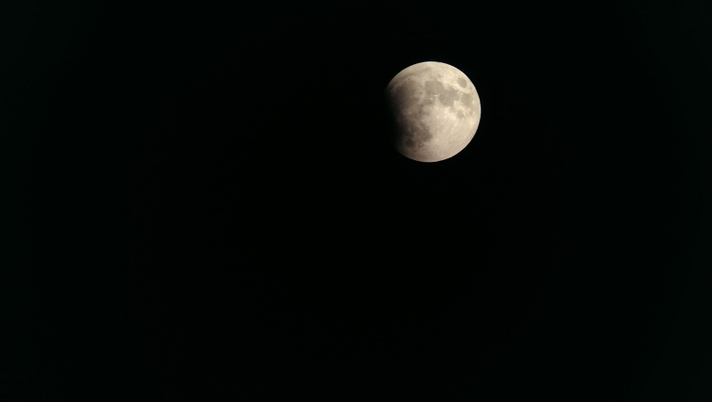 Lunar eclipse. Picture taken through a telescope with a phone!