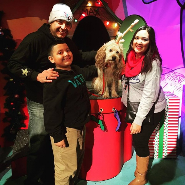 Universal Studios for Christmas. This is Max, The Grinch's dog.