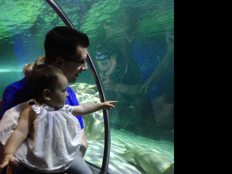 Mall of America aquarium