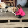 Visiting the farm store