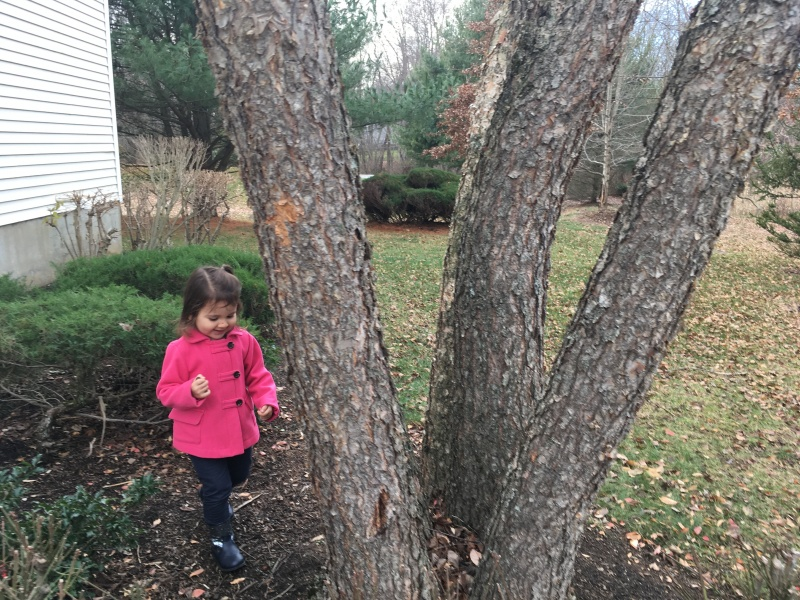 Leaving acorns for the squirrels to find