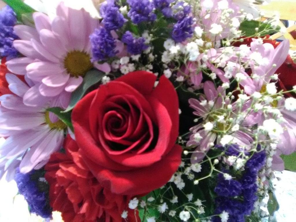Adoption profile adoption blog hopeful adoptive parents liz and beautiful flowers izmirmasajfo