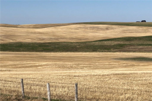 On Township Road 264  , Rural Rocky View County