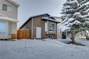 154 MARTINDALE BV NE, Calgary