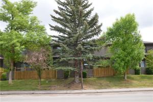 #811 3240 66 AV SW, Calgary