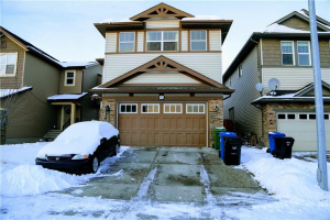 452 SKYVIEW SHORES MR NE, Calgary