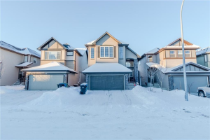 36 Saddlelake GD NE, Calgary