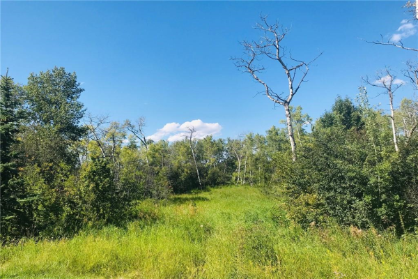 LOT 9 - 274037 Havens GA E, Rural Foothills County