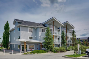 #110 380 MARINA DR , Chestermere