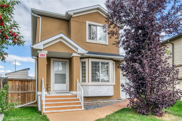 203 MARTINVALLEY CR NE, Calgary