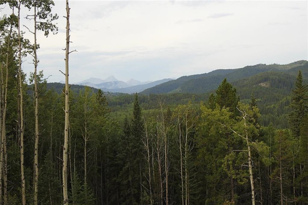 43 Acres Bordering Kananaskis  , Rural Foothills County