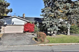48 Forest Grove Dr