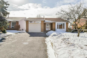 49 Panter Cres, Ajax