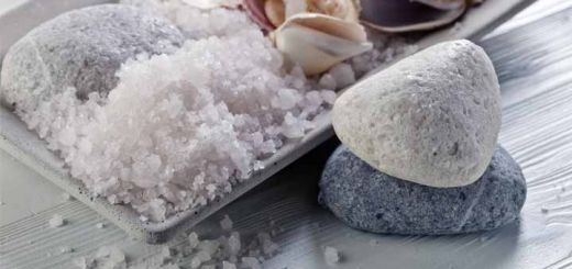 sea-salt-shells
