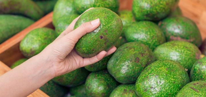 holding-avocado