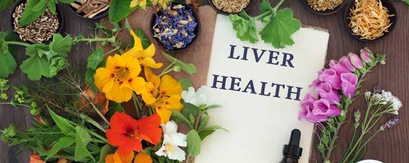 liver-health