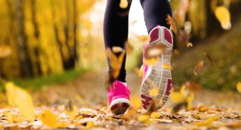 0-133842402-fall-fitness