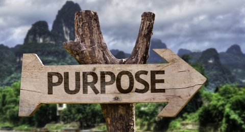 Beliefs You Must Internalize Before You Find Your Life's Purpose